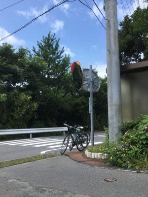 伊豆大島を走るクロスバイク2台