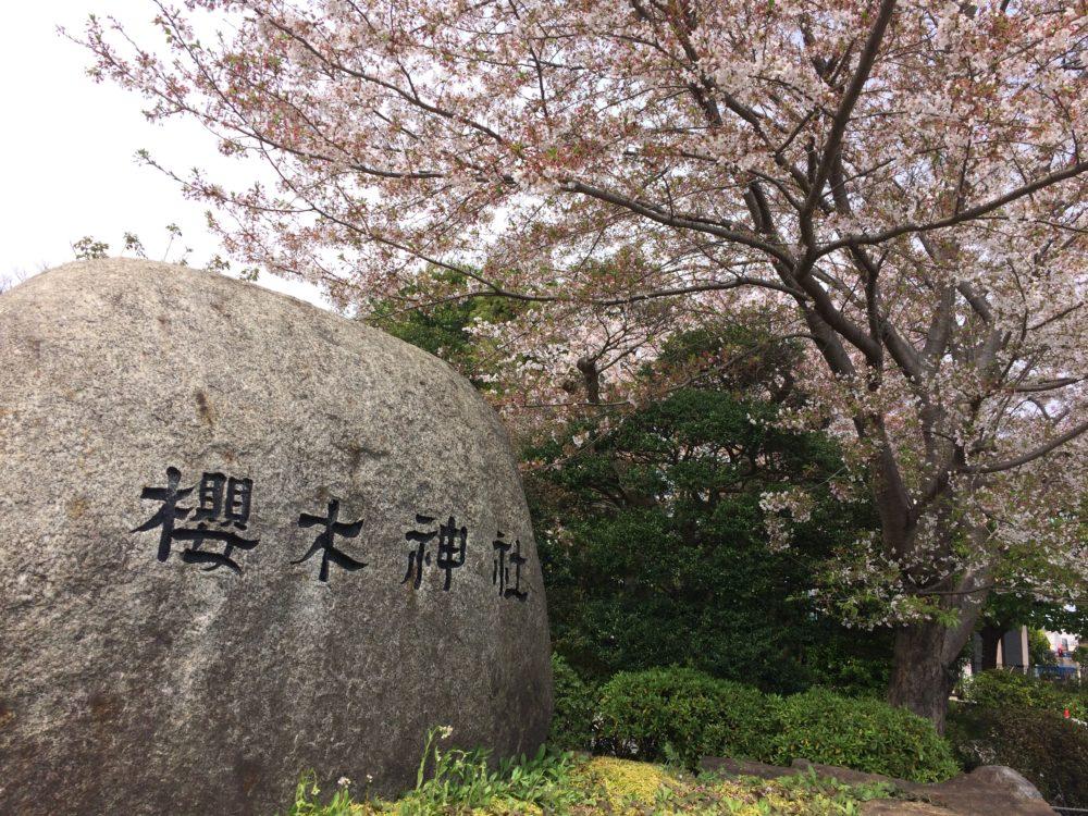 櫻木神社(千葉県野田市)