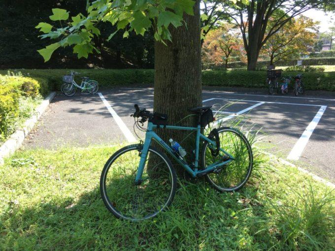 木に立てかけてクロスバイクを駐輪