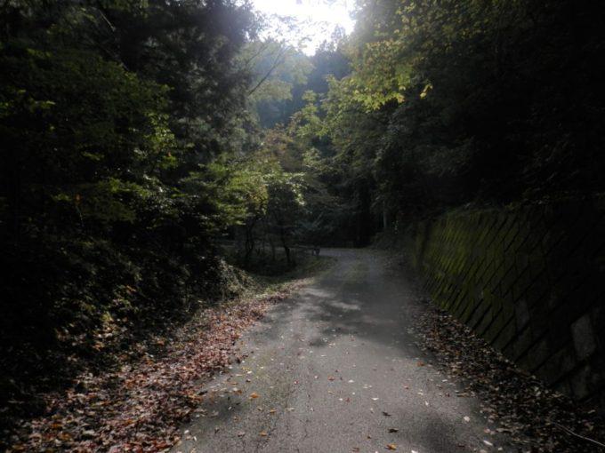 埼玉県飯能市の仁田山峠