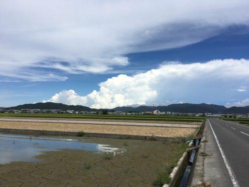 淡路島、畑の中の道