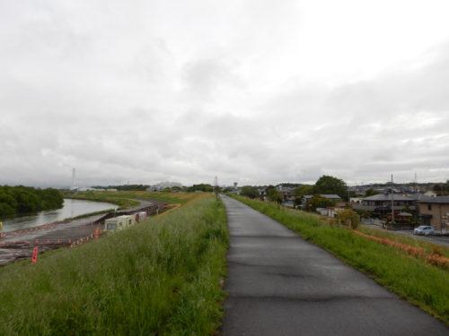雨上がりの江戸川サイクリングロード