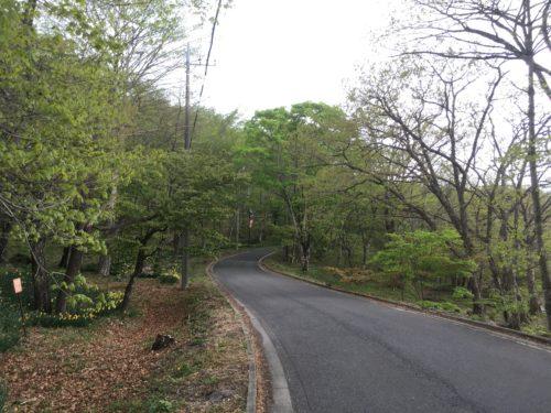 榛名湖周遊道路