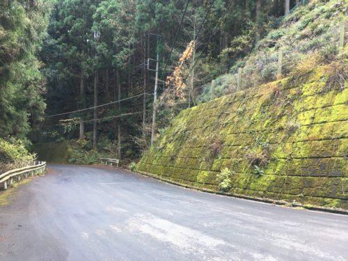 天目指峠、舗装された道
