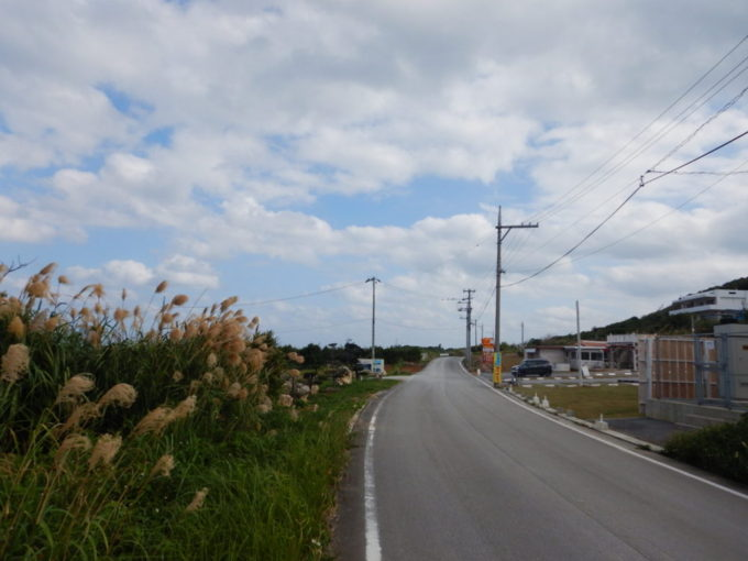 古宇利島の県道247号