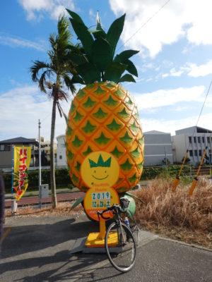 沖縄県那覇市のパイナップルハウス
