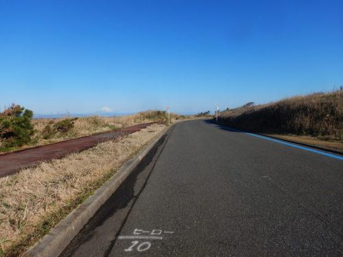 伊豆大島のサンセットパームライン