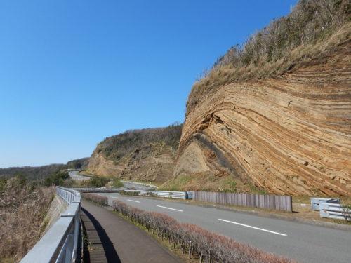 伊豆大島の地層切断面