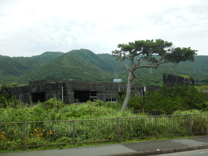 三宅島の阿古小学校