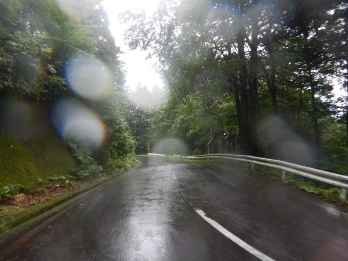 県道4号・むつ恐山公園大畑線の一本松