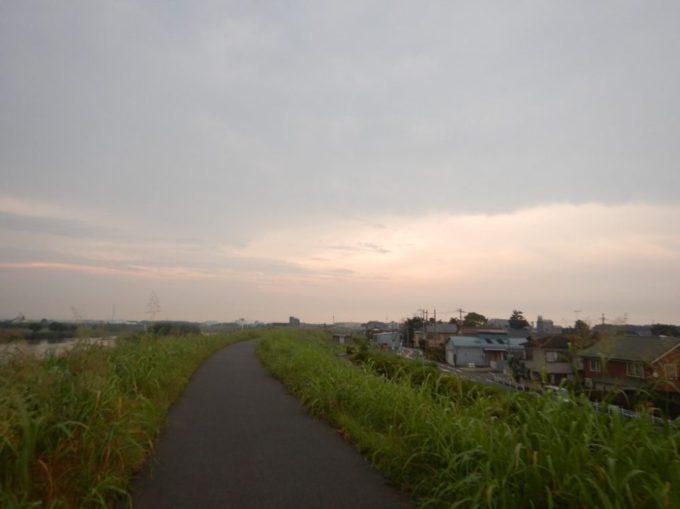 夕暮れの江戸川サイクリングロード