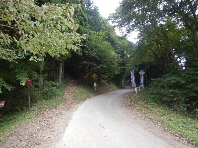 白石峠、堂平天文台へ続く道