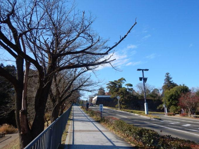 仙台城跡の坂道