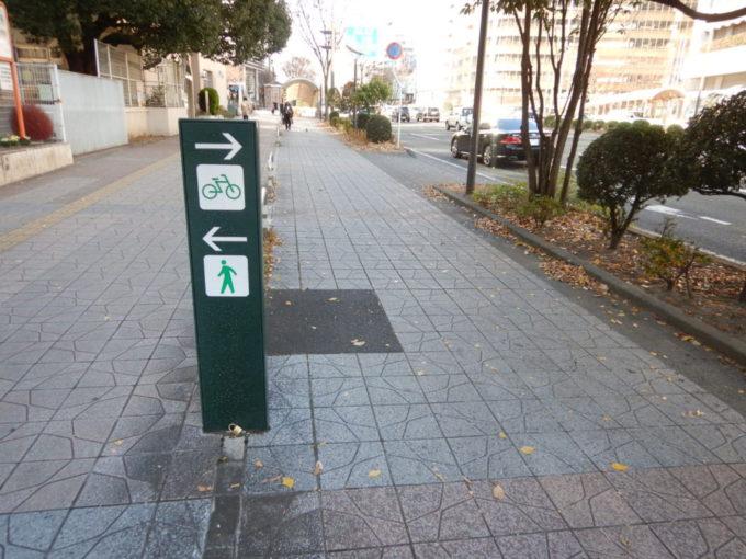 仙台市内の歩道